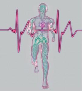 SanteSportMagazine-Senior-7-Coeur-le-cas-des-coronariens-270x300